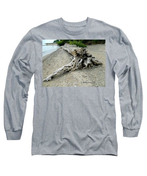 Long Sleeve T-Shirt featuring the photograph Driftwood At Lake Erie by Kathy Barney