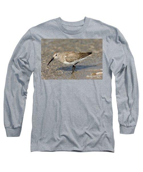 Dunlin Calidris Alpina In Winter Plumage Long Sleeve T-Shirt