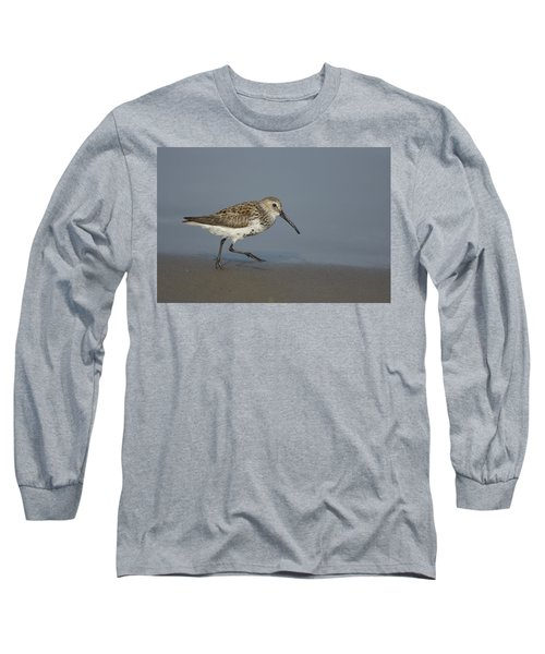 Dunlin Walking Along Shorelinetexas Long Sleeve T-Shirt
