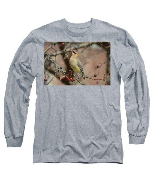 Cedar Waxwing In Winter Long Sleeve T-Shirt by James Petersen