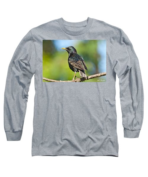 European Starling In A Tree Long Sleeve T-Shirt