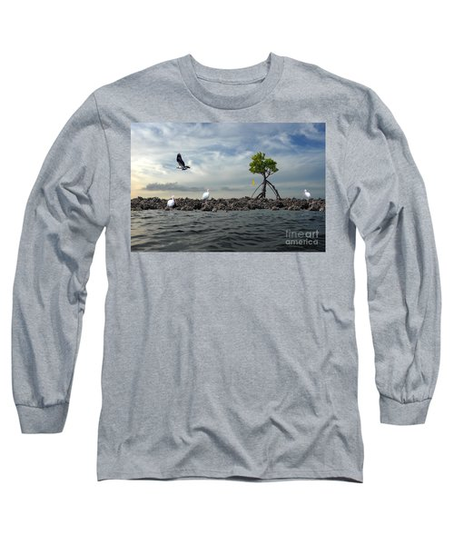 Long Sleeve T-Shirt featuring the photograph Everglade Scene by Dan Friend