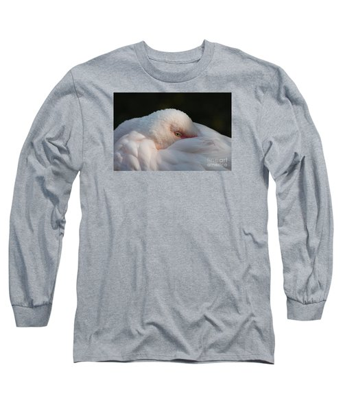 Eye On You Long Sleeve T-Shirt by Judy Whitton