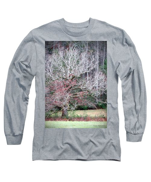 Fall At Cades Cove Long Sleeve T-Shirt