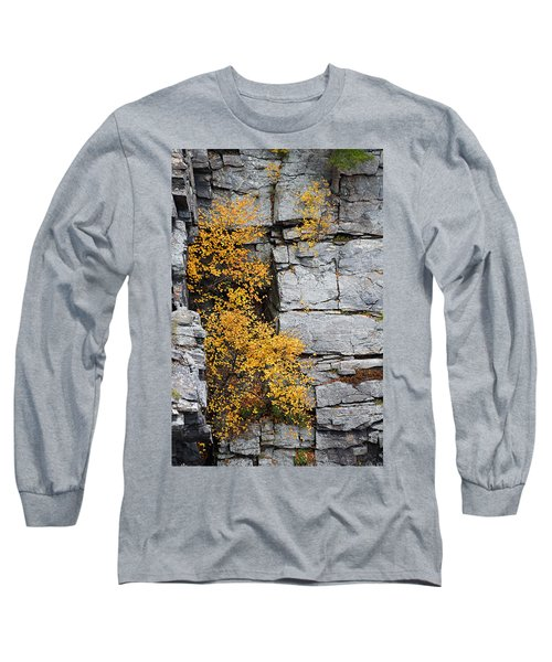 Fall Foliage Colors 01 Long Sleeve T-Shirt