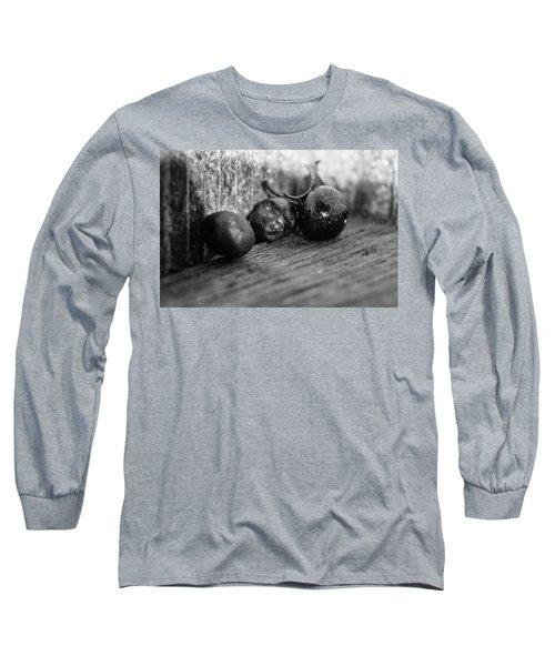Fallen Berries Long Sleeve T-Shirt