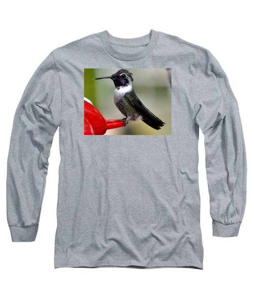 Long Sleeve T-Shirt featuring the photograph Male Anna On Feeder Perch Posing by Jay Milo