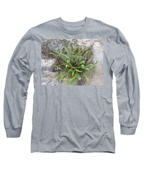 Fern Tendrils  Long Sleeve T-Shirt
