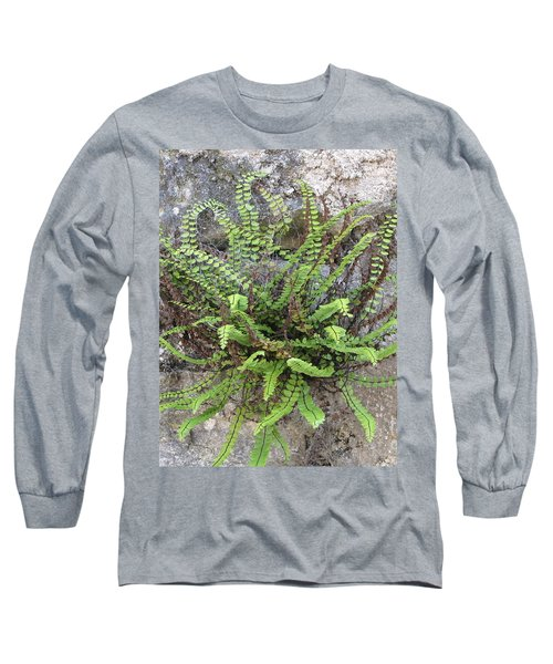 Fern Tendrils  Long Sleeve T-Shirt