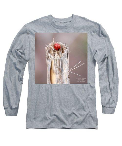 Fine Art- Ladybird Long Sleeve T-Shirt