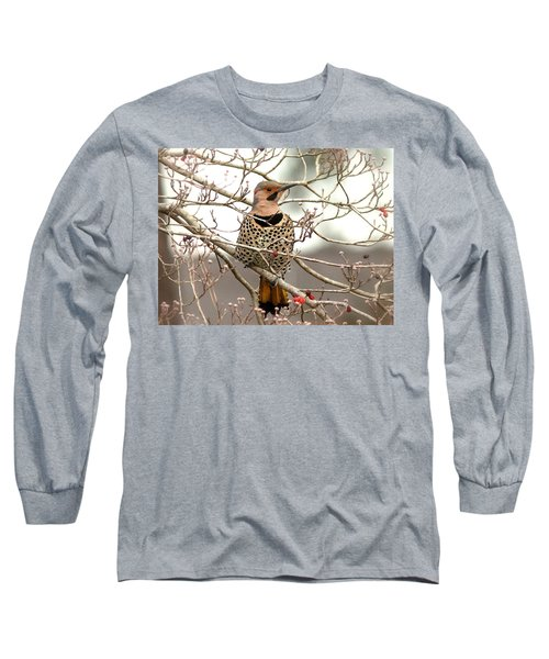 Flicker - Alabama State Bird - Attention Long Sleeve T-Shirt