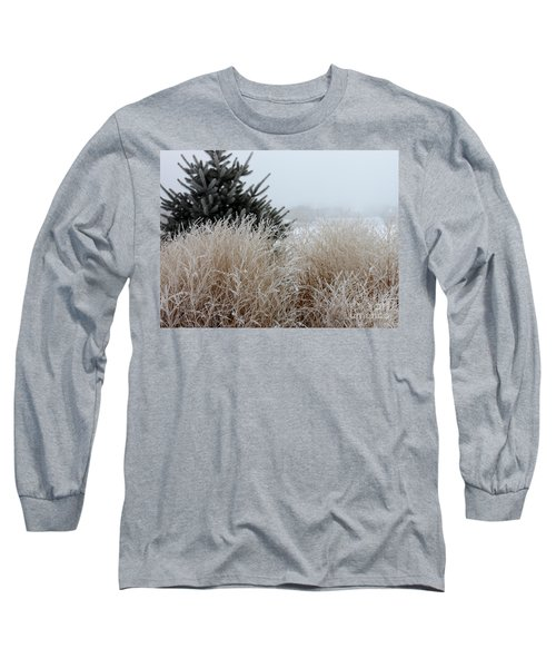 Frosted Grasses Long Sleeve T-Shirt by Debbie Hart