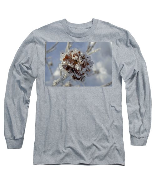 Frosted Willow Rose Long Sleeve T-Shirt by Cathy Mahnke