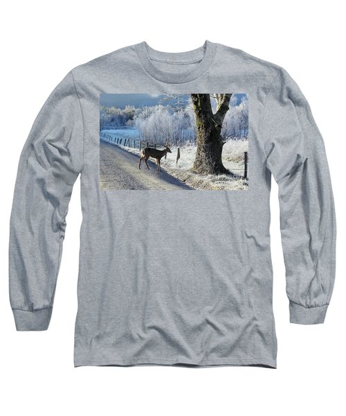 Frosty Cades Cove II Long Sleeve T-Shirt by Douglas Stucky