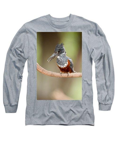 Giant Kingfisher Megaceryle Maxima Long Sleeve T-Shirt by Panoramic Images