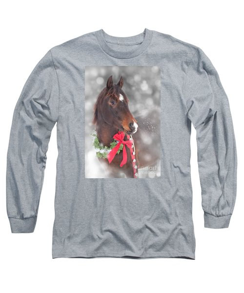 Gift Horse Dream Long Sleeve T-Shirt