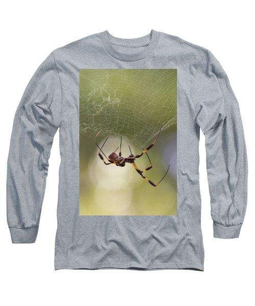 Golden-silk Spider Long Sleeve T-Shirt