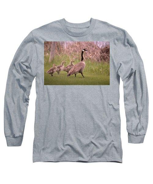 Goslings On A Walk Long Sleeve T-Shirt