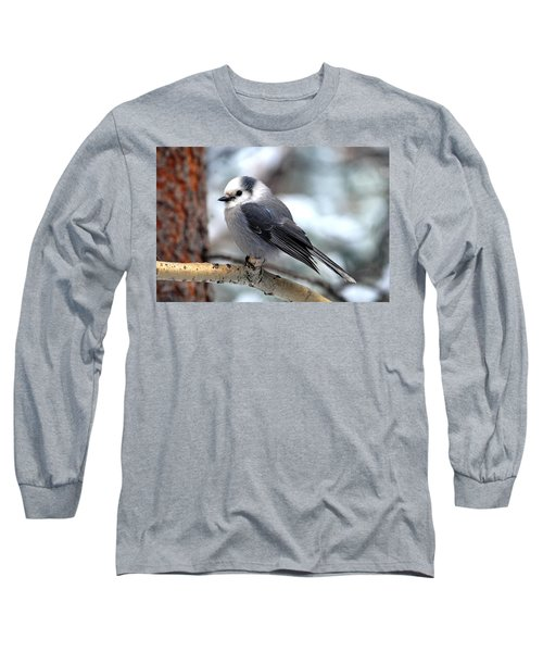 Gray Jay On Aspen Long Sleeve T-Shirt