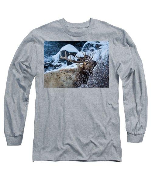 Grazing Elk Long Sleeve T-Shirt