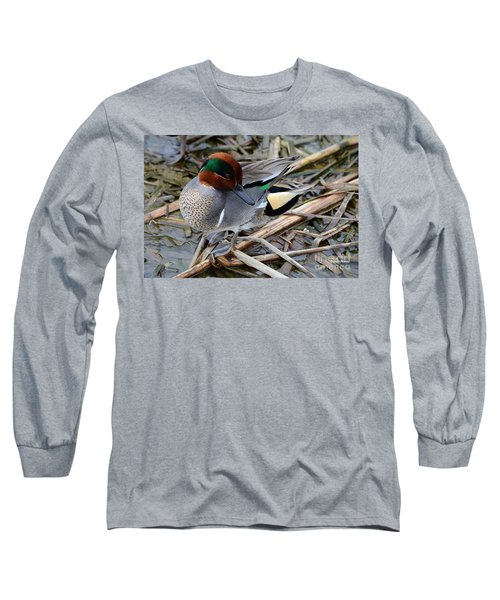 Long Sleeve T-Shirt featuring the photograph Green-winged Teal by Debra Martz