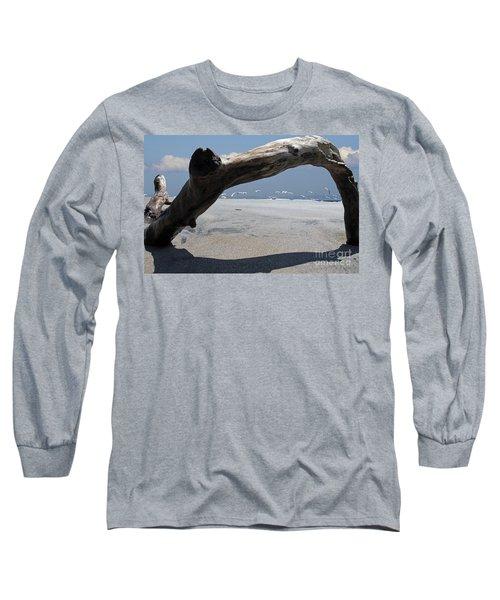 Gulls Away Long Sleeve T-Shirt by Bob Hislop