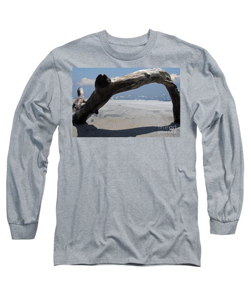 Gulls Away Long Sleeve T-Shirt