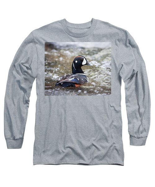 Harlequin Duck In Rapids Long Sleeve T-Shirt by Jack Bell