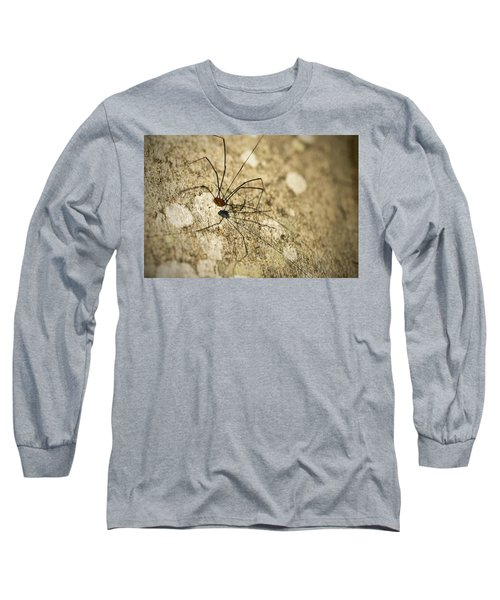 Long Sleeve T-Shirt featuring the photograph Harvestman Spider by Chevy Fleet