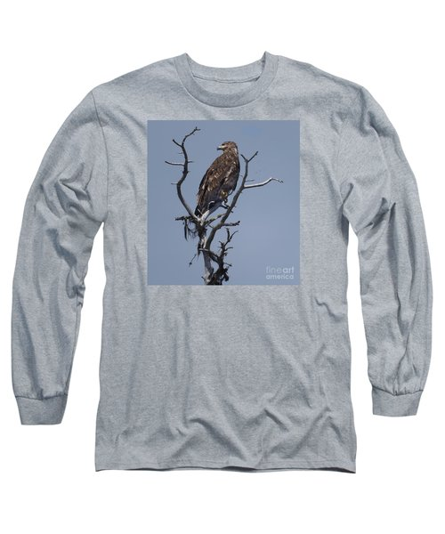 Hawk Eye Long Sleeve T-Shirt