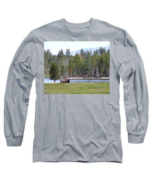 Hayden Valley Bison Long Sleeve T-Shirt