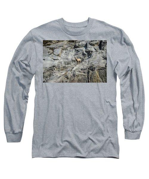 Big Horn Sheep Coming Down The Mountain  Long Sleeve T-Shirt
