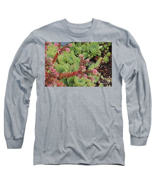 Long Sleeve T-Shirt featuring the photograph Hen And Chick In Bloom by Ann E Robson