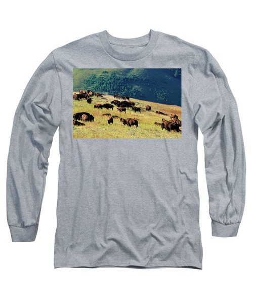 Herd Of Bison Bison Bison In Mountain Long Sleeve T-Shirt
