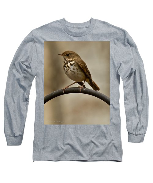 Long Sleeve T-Shirt featuring the photograph Hermit Thrush by Robert L Jackson