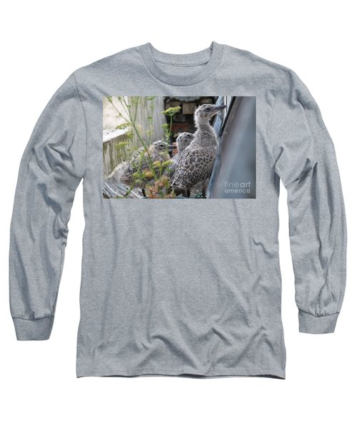 Herring Gull Chicks Long Sleeve T-Shirt