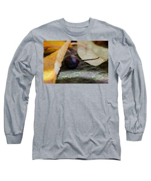 Hiding From Fall Long Sleeve T-Shirt