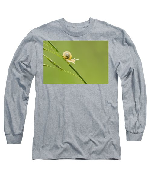 High Speed Snail Long Sleeve T-Shirt by Mircea Costina Photography