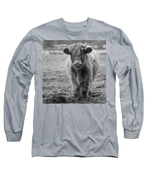 Highland Calf Long Sleeve T-Shirt by Sonya Lang