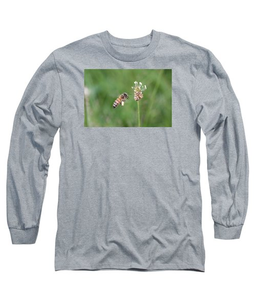 Honeybee And English Plantain Long Sleeve T-Shirt