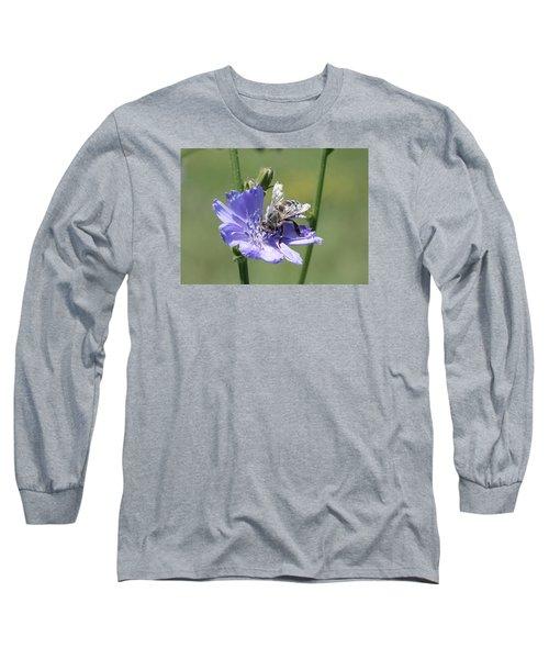 honeybee on Chickory Long Sleeve T-Shirt by Lucinda VanVleck