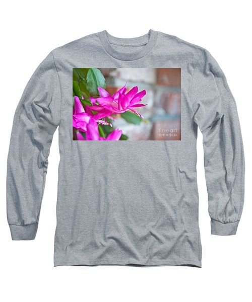 Hot Pink Christmas Cactus Flower Art Prints Long Sleeve T-Shirt