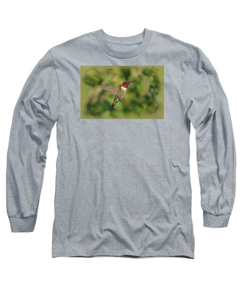 Hummingbird In Flight Long Sleeve T-Shirt by Sandy Keeton