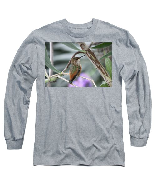 Hummingbird On A Branch Long Sleeve T-Shirt