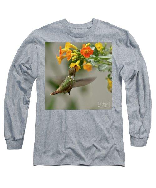 Hummingbird Sips Nectar Long Sleeve T-Shirt by Heiko Koehrer-Wagner