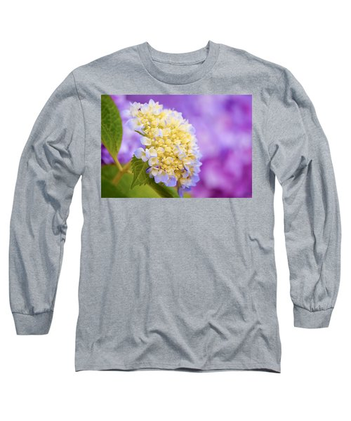 Hydrangea On Purple Long Sleeve T-Shirt