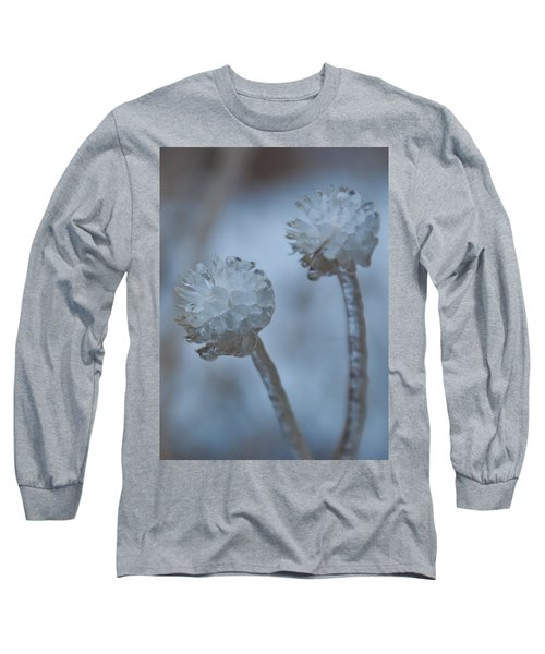 Ice-covered Winter Flowers With Blue Background Long Sleeve T-Shirt