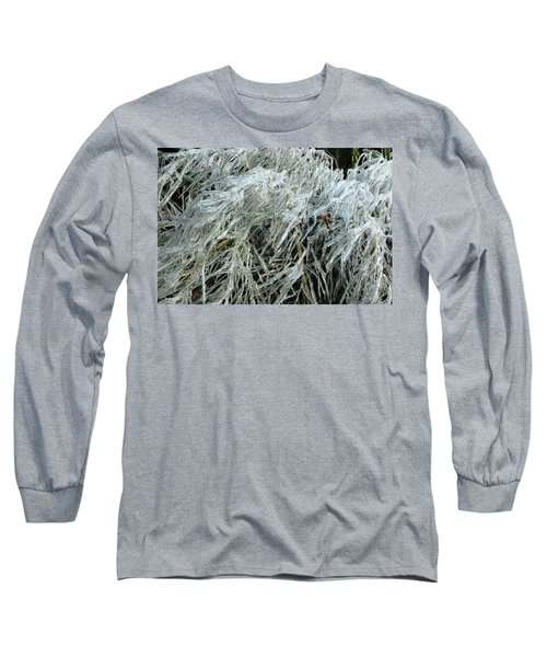 Ice On Bamboo Leaves Long Sleeve T-Shirt by Daniel Reed
