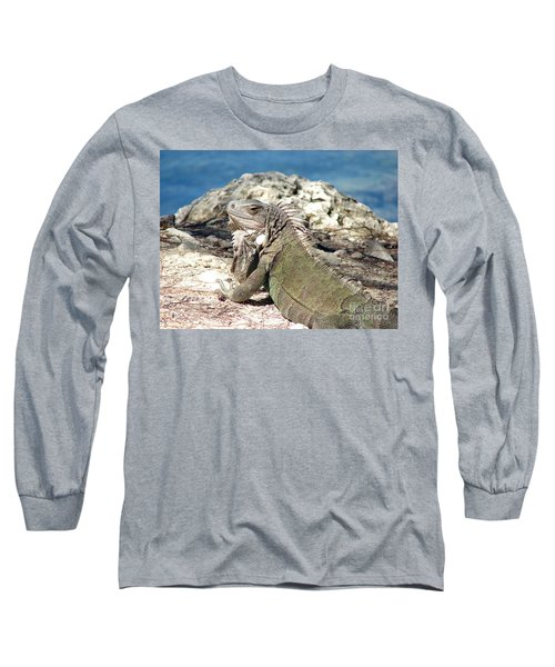 Iguana In The Sun Long Sleeve T-Shirt