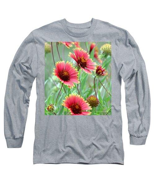 Indian Blanket Wildflowers Long Sleeve T-Shirt